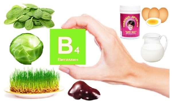 Продукты с содержанием витамина B4