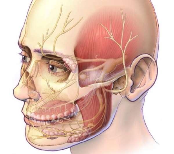 Воспаления тройничного нерва