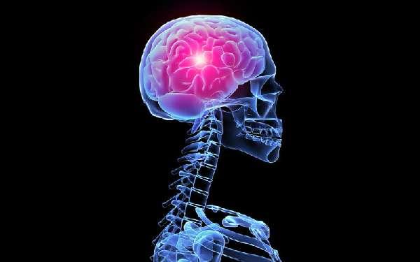 воспалительные процессы в мозгу