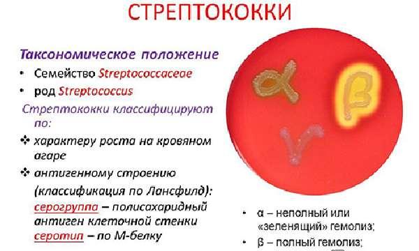 Особенности острого тонзиллита у детей одного года фото