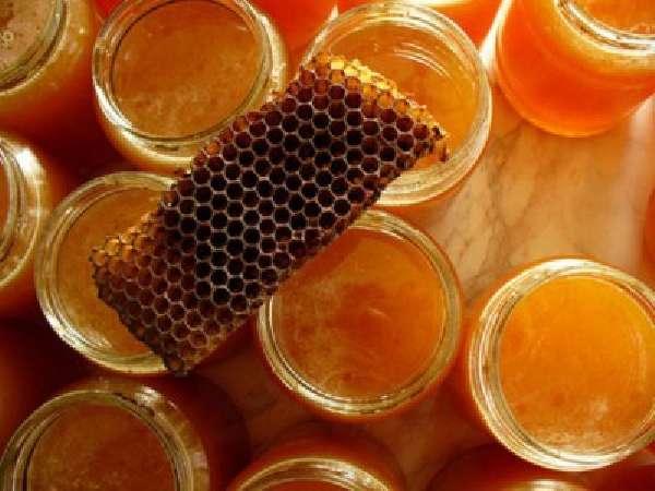 Место продуктов пчеловодства в терапии