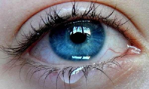 Классификация симптомов фото