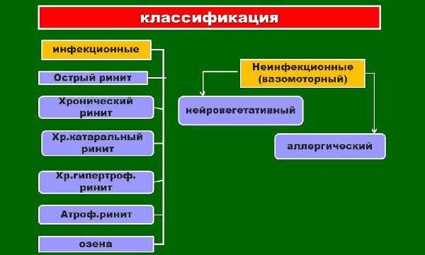 Виды и классификация насморка