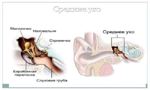 Болезни органов зрения