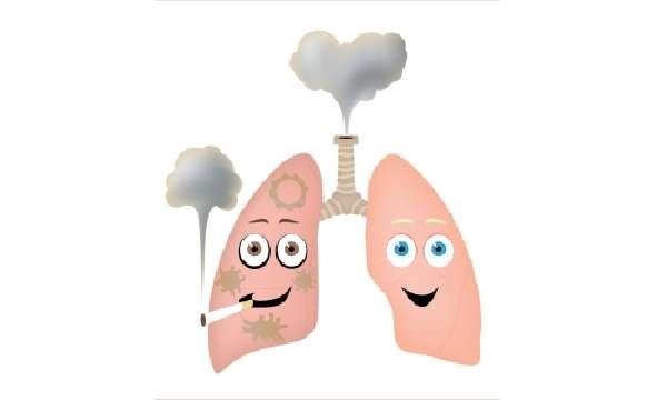 Факторы риска туберкулезной инфекции фото