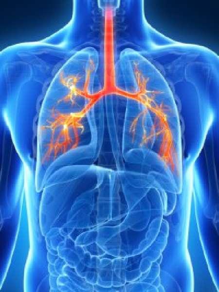 Причины и патогенетические механизмы развития воспаления