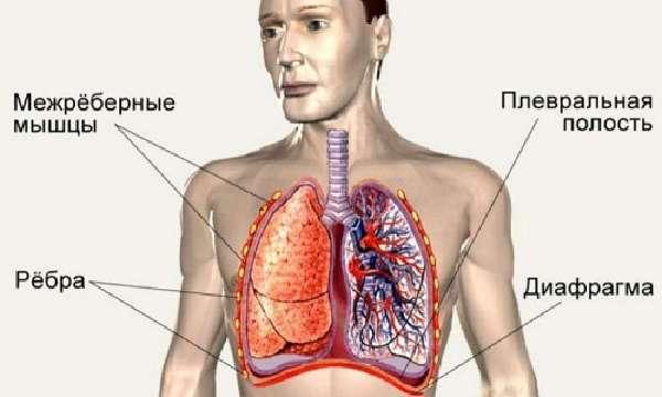 Факторы риска спонтанного пневмоторакса
