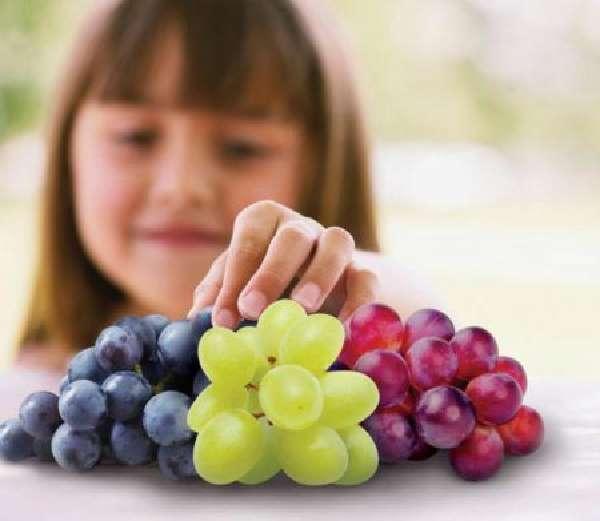 Можно ли отравиться виноградом, и что делать в этом случае. Понос от винограда – почему и в каких случаях может случиться расстройство стула?